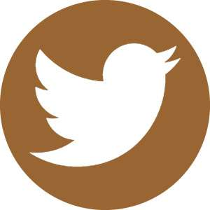 TWITTER LOGO Sienna Brown